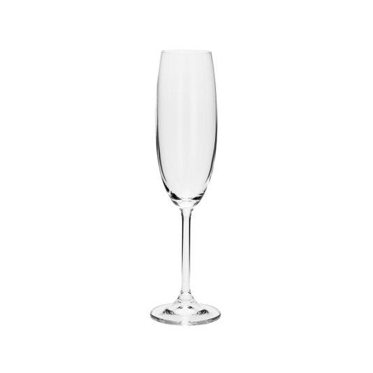 Jogo de 6 Taças Para Champagne Gastro/ Colibri Bohemia 220 ml