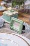 Marcador de Lugar em Resina Manu Fisch Verde 7,5 cm