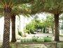 Panela Redonda Signatura Le Creuset Verde Palm 24cm