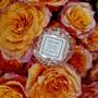 Vela Macaron Rose Otto Roses Voluspa 15 Horas